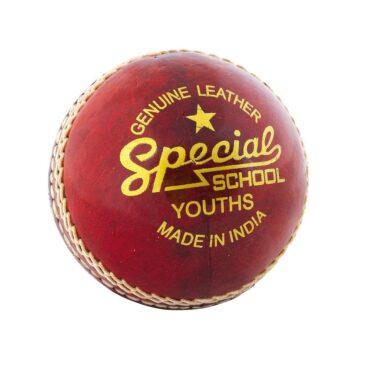 Readers Special School Cricket Ball Junior